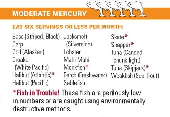 Listing of Fish Moderate in Mercury Bass (Striped, Black) Carp Cod (Alaskan) Croaker (White Pacific) Halibut (Atlantic) Halibut (Pacific) Jacksmelt(Silverside) Lobster Mahi Mahi Monkfish Perch (Freshwater) Sablefish Skate Snapper Tuna (Canned chunk light) Tuna (Skipjack) Weakfish (Sea Trout)