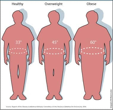 Images of Waist sizes and how they relate to being healthy, overweight, or obese.
