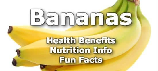 Top 5 Health Benefits of Bananas + Nutrition Info and Fun Facts