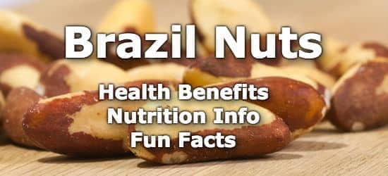 Top 5 Health Benefits of Brazil Nuts + Nutrition Info and Fun Facts