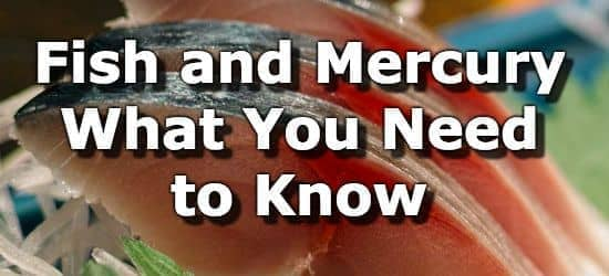 Fish And Mercury - What You Need to Know