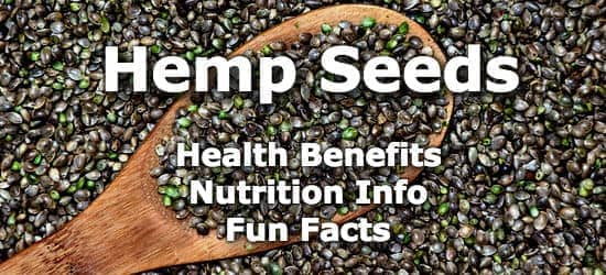 Top 5 Health Benefits of Hemp Seeds + Nutrition Info and Fun Facts