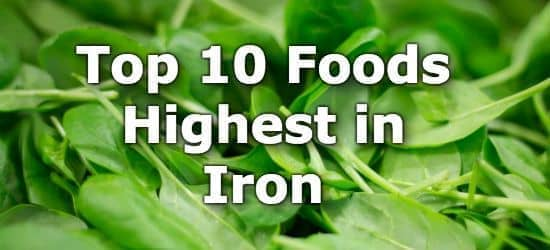 Top 10 Foods Highest in Iron + Infographic