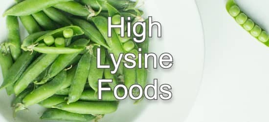Top 10 Foods Highest in Lysine
