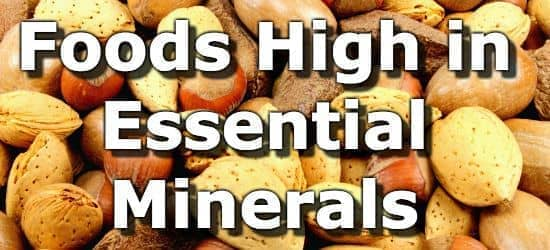 Top 15 Foods Highest in Minerals