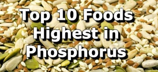 Top 10 Foods Highest in Phosphorus