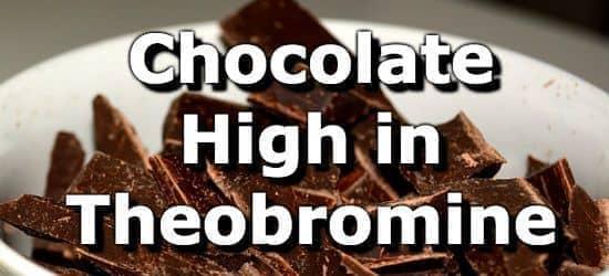Os 10 principais produtos de chocolate com teobromina mais alta