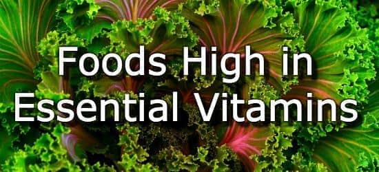Top 15 Foods Highest in Vitamins