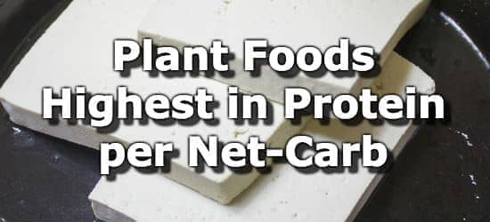 Plant Foods Highest in Protein per Net Carb
