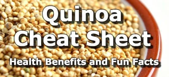 Top 5 Health Benefits of Quinoa + Nutrition Info and Fun Facts