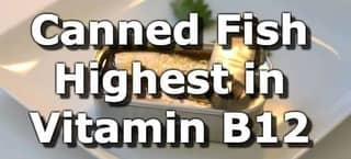 Canned Fish Highest in Vitamin B12 (Cobalamin)