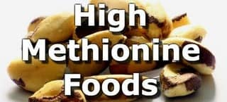 High Methionine Foods
