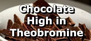 Top 10 Chocolate Products Highest in Theobromine