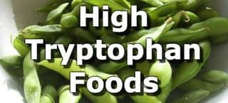 High Tryptophan Foods