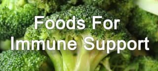 Healthy Foods to Support Your Immune System