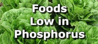 Foods Low in Phosphorus for People with Kidney Disease