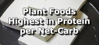27 Plant Foods Highest in Protein per Net Carb