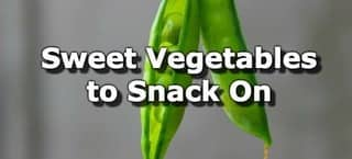 The Five Sweetest Vegetables You Can Snack On