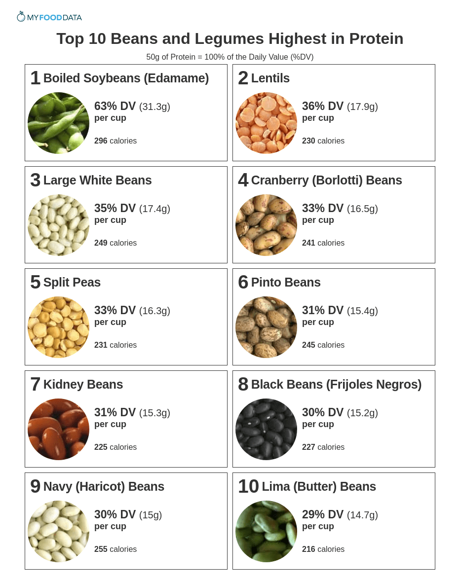 A one-page printable list of beans high in protein.