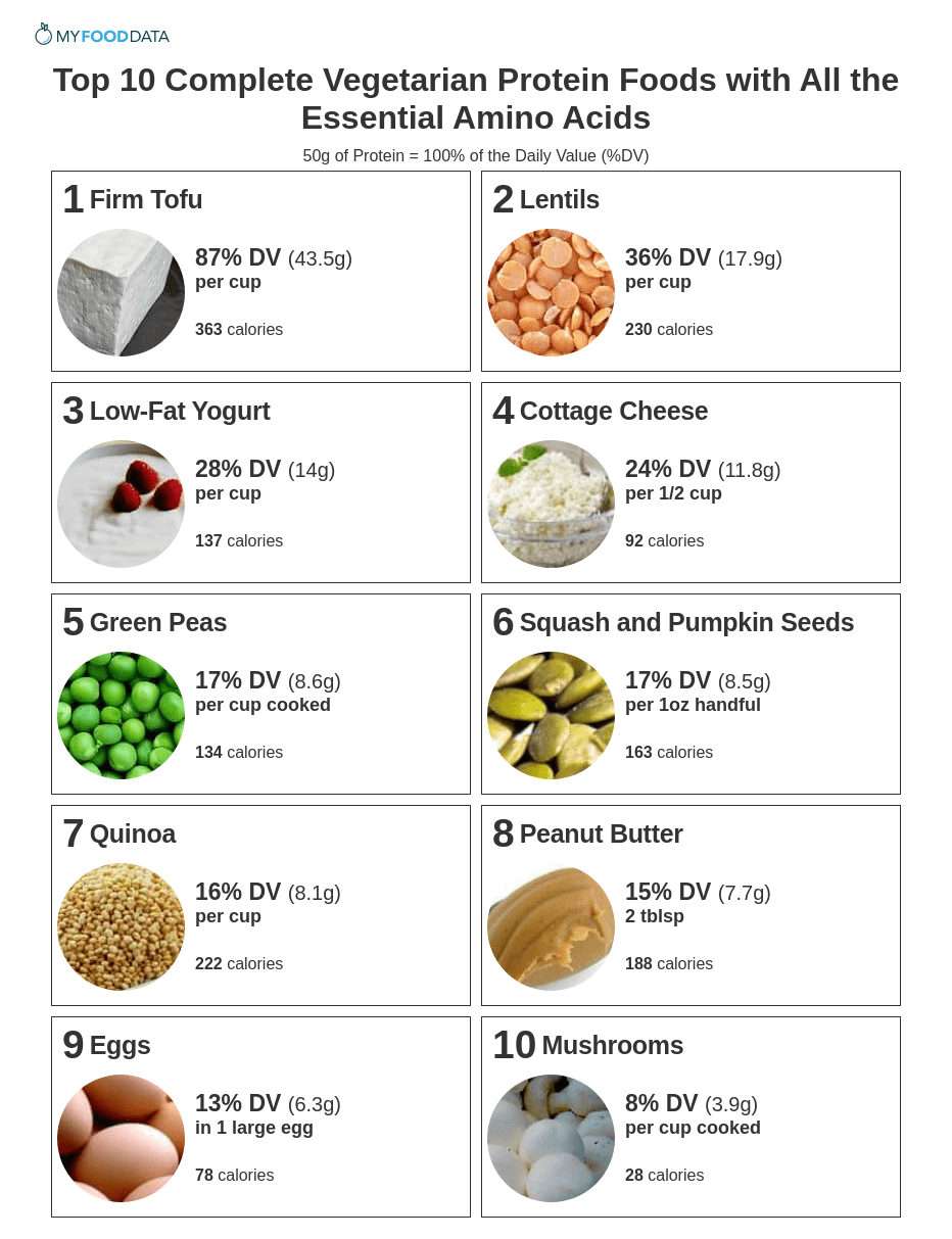 A printable one-page list of vegetarian foods high in protein including tofu, beans, lentils, yogurt, milk, cheese, green peas, nuts, seeds, whole grains, peanut butter, eggs, and white button mushrooms.