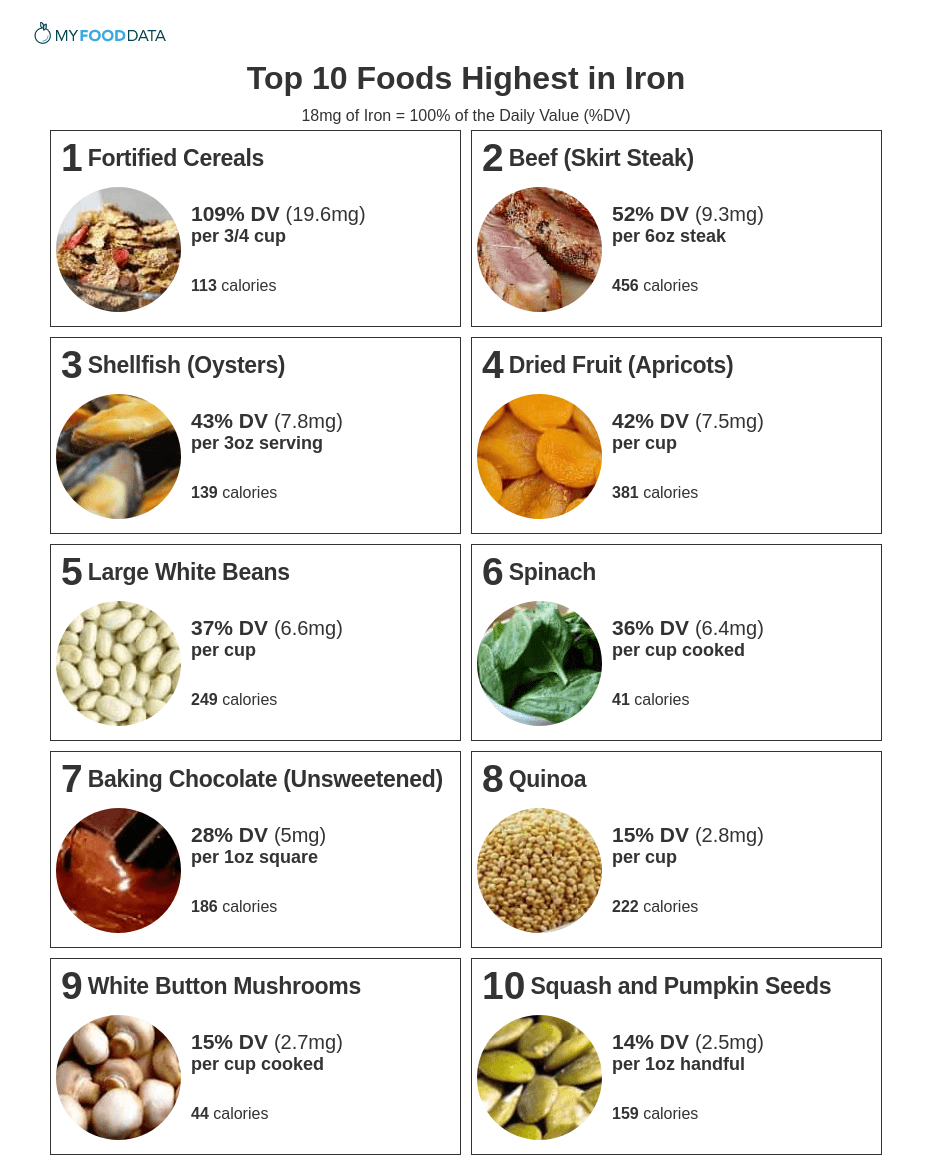 Printable one-page list of iron rich foods including: fortified cereals, beef, shellfish, dried fruit, beans, lentils, dark leafy greens, dark chocolate, quinoa, mushrooms, and squash seeds.