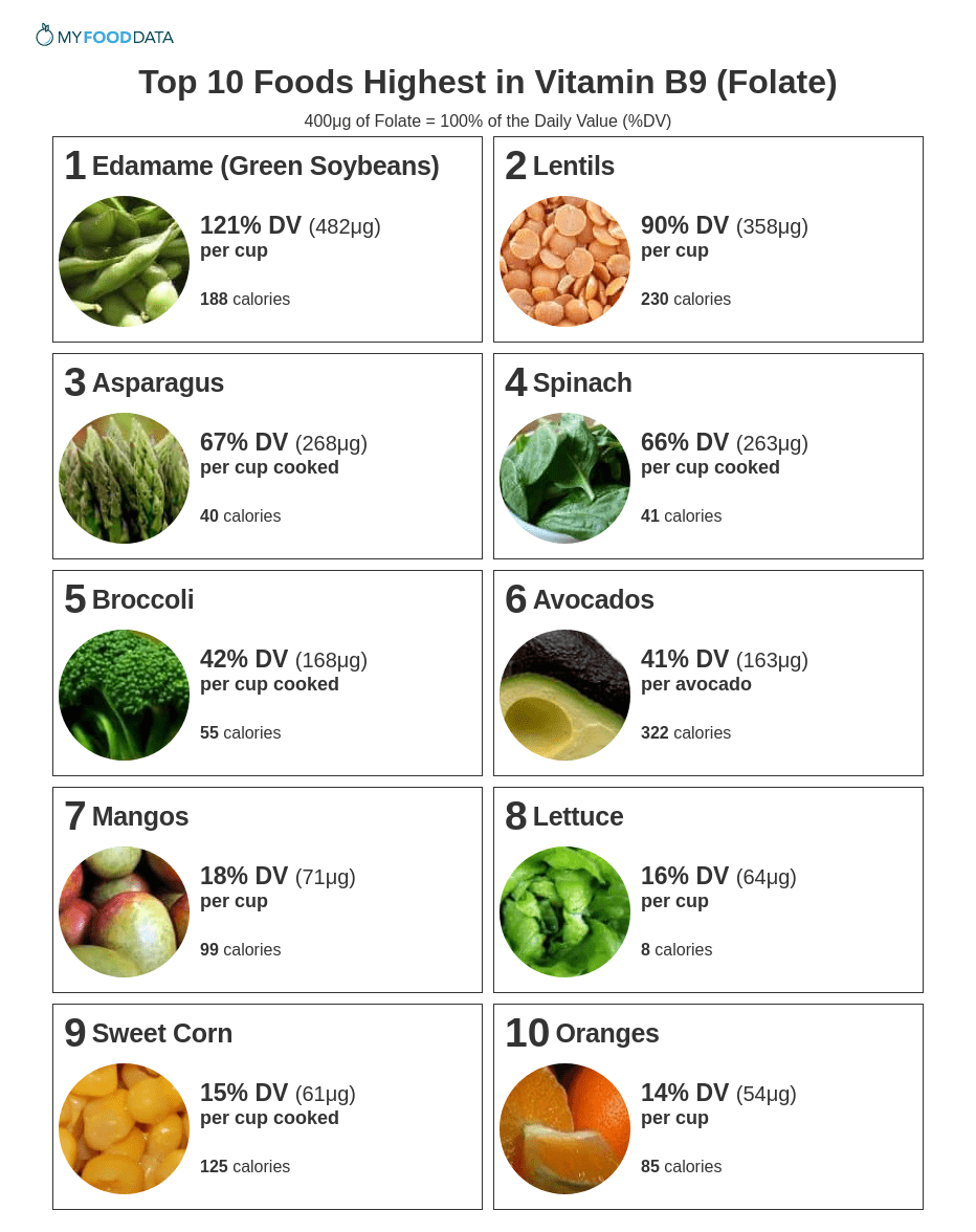 A printable list of foods high in folate. High folate foods include beans, lentils, asparagus, spinach, broccoli, avocado, mangoes, lettuce, sweet corn, and oranges, and whole wheat bread.