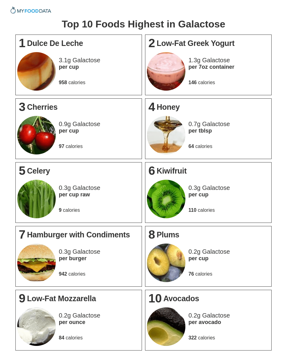 A printable list of high galactose foods.
