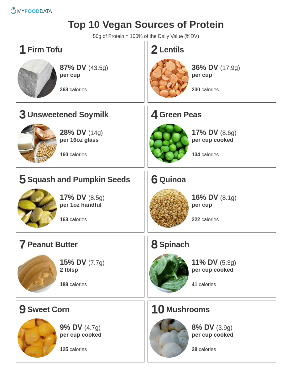 A printable one-page list of vegan foods high in protein.